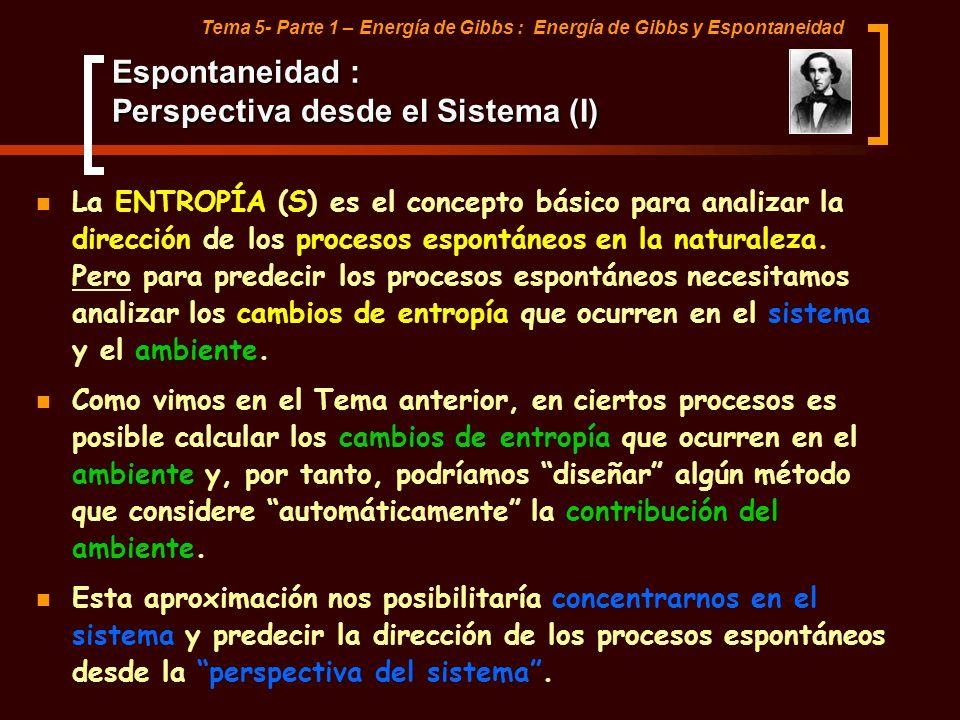Espontaneidad : Perspectiva desde el Sistema (I)