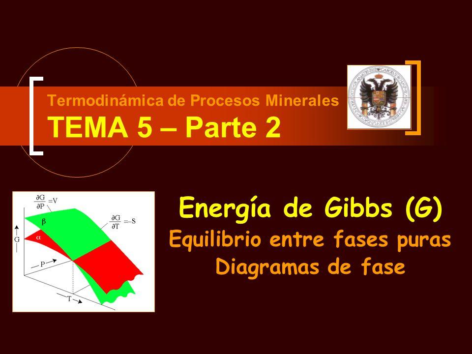 Termodinámica de Procesos Minerales TEMA 5 – Parte 2
