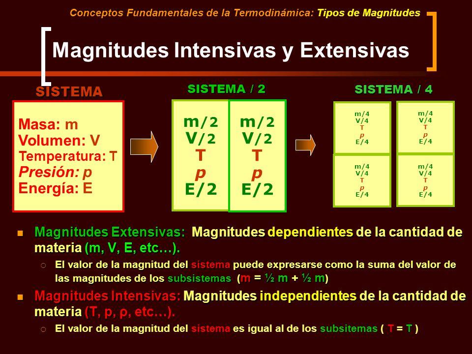 Magnitudes Intensivas y Extensivas