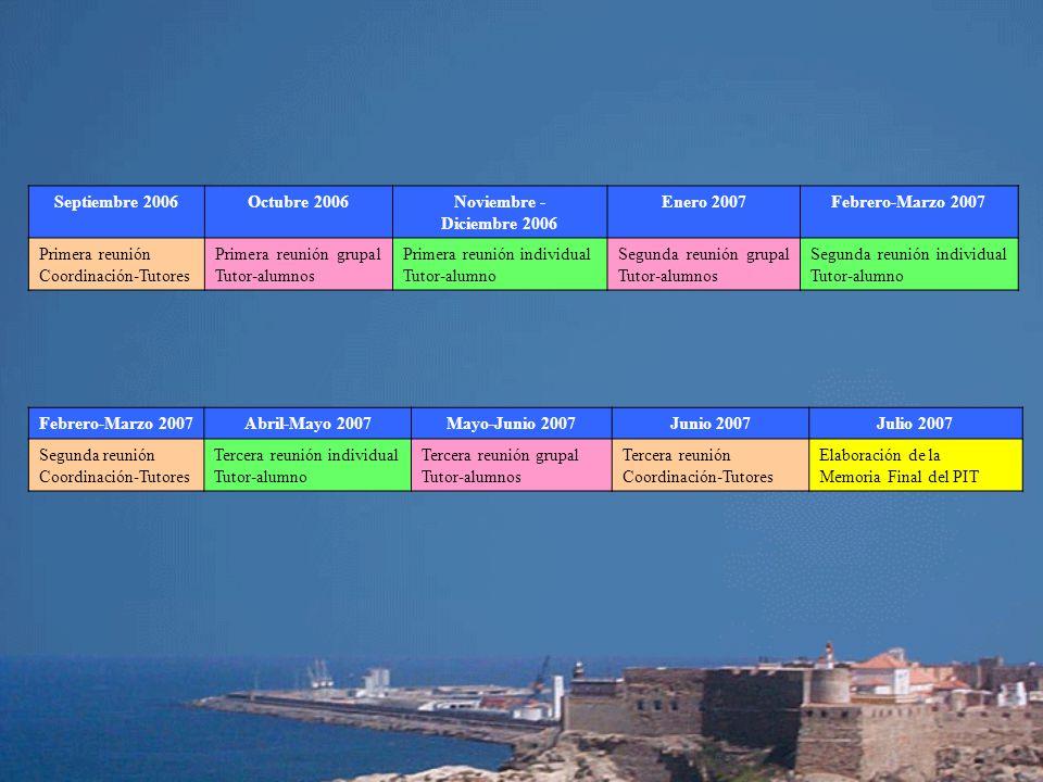 Septiembre 2006 Octubre 2006. Noviembre - Diciembre 2006. Enero 2007. Febrero-Marzo 2007. Primera reunión Coordinación-Tutores.