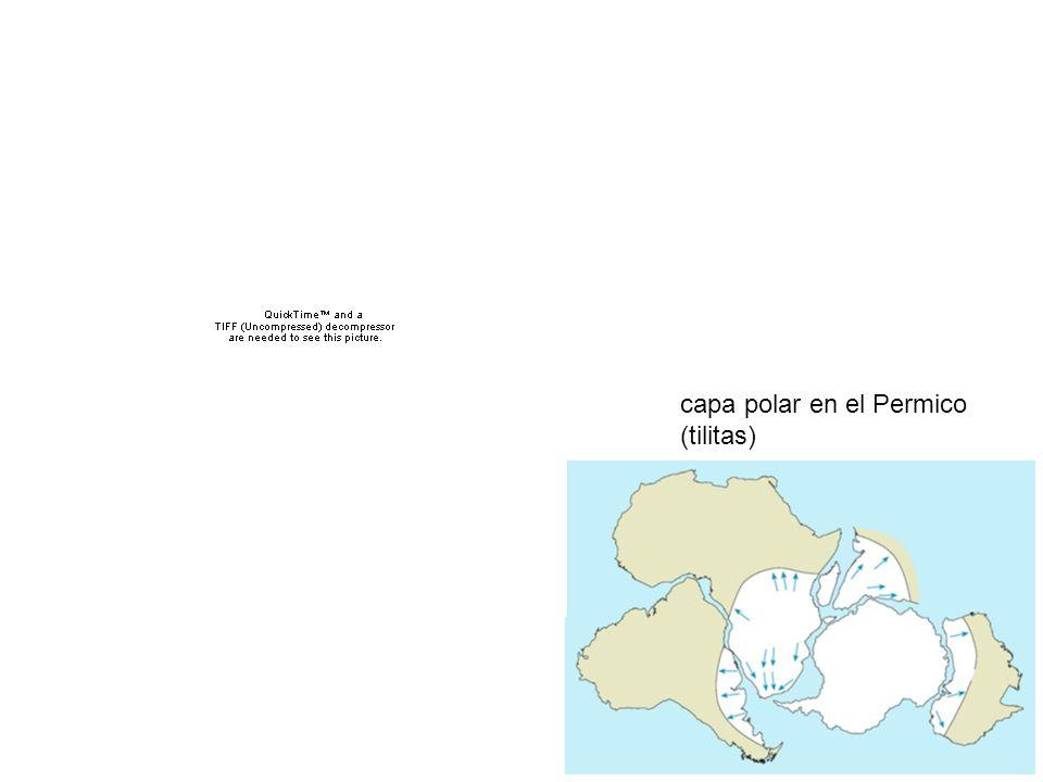 capa polar en el Permico