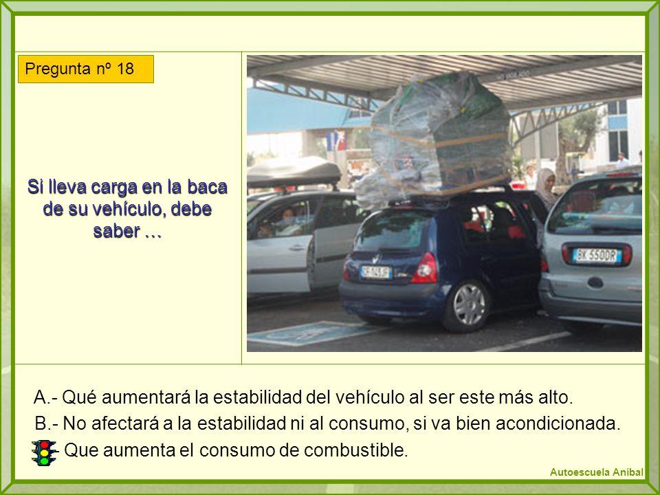Si lleva carga en la baca de su vehículo, debe saber …