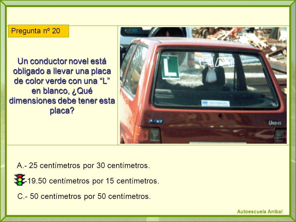 Un conductor novel está obligado a llevar una placa de color verde con una L en blanco, ¿Qué dimensiones debe tener esta placa