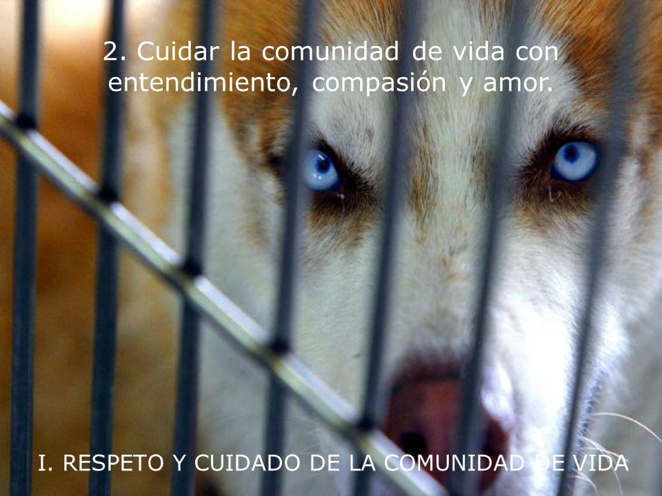 I. RESPETO Y CUIDADO DE LA COMUNIDAD DE VIDA