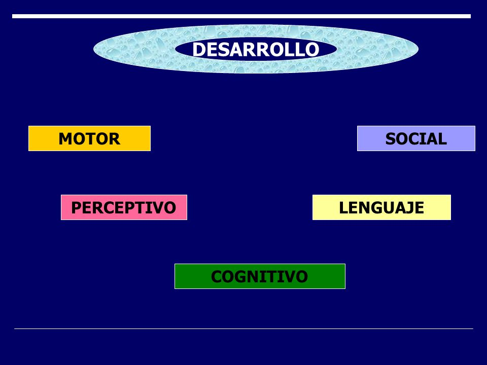 DESARROLLO MOTOR SOCIAL PERCEPTIVO LENGUAJE COGNITIVO