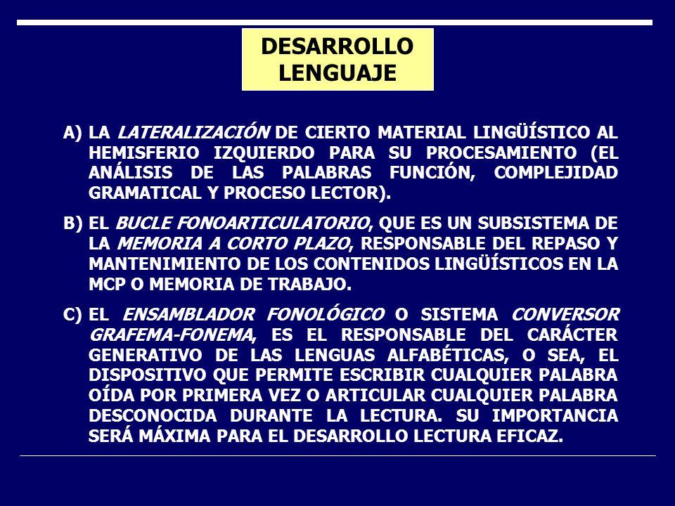 DESARROLLO LENGUAJE