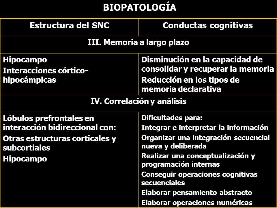 III. Memoria a largo plazo IV. Correlación y análisis