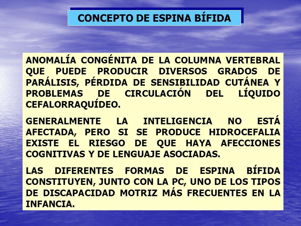 CONCEPTO DE ESPINA BÍFIDA