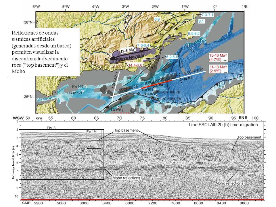 Reflexiones de ondas sísmicas artificiales (generadas desde un barco) permiten visualizar la discontinuidad sedimento-roca ( top basement ) y el Moho