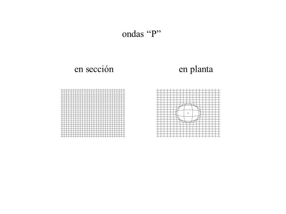 ondas P en sección en planta