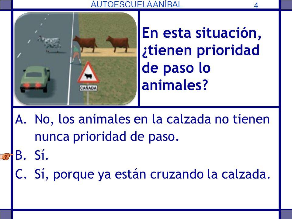 En esta situación, ¿tienen prioridad de paso lo animales