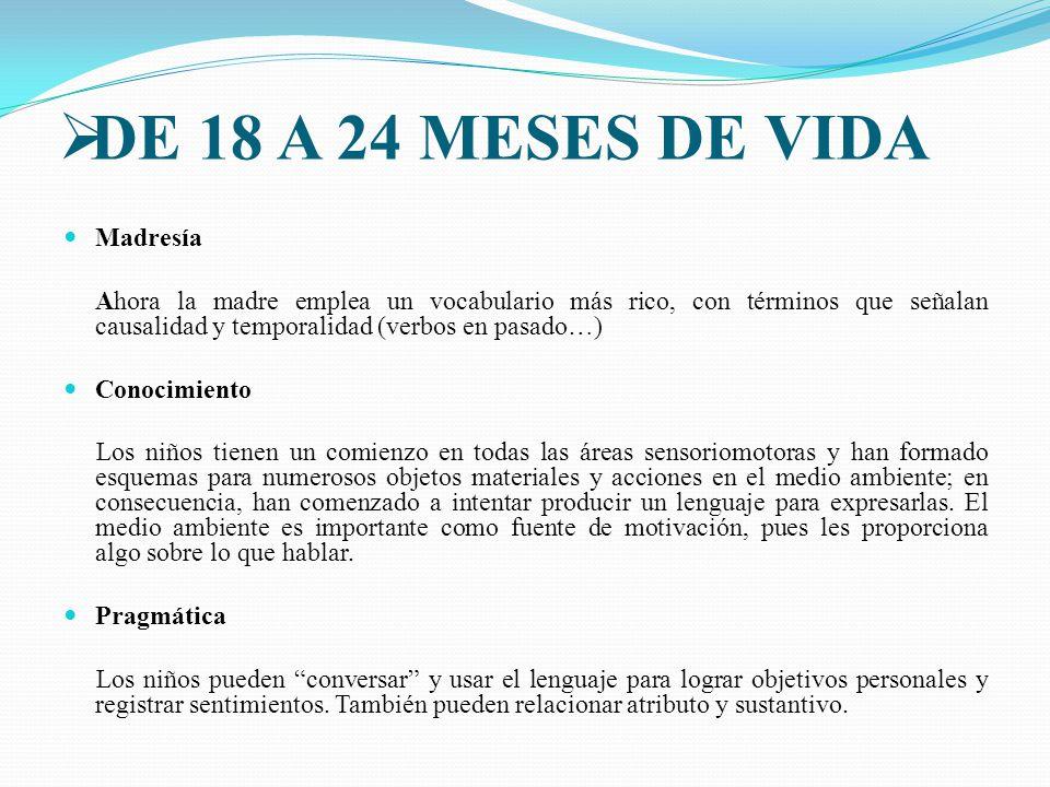 DE 18 A 24 MESES DE VIDA Madresía
