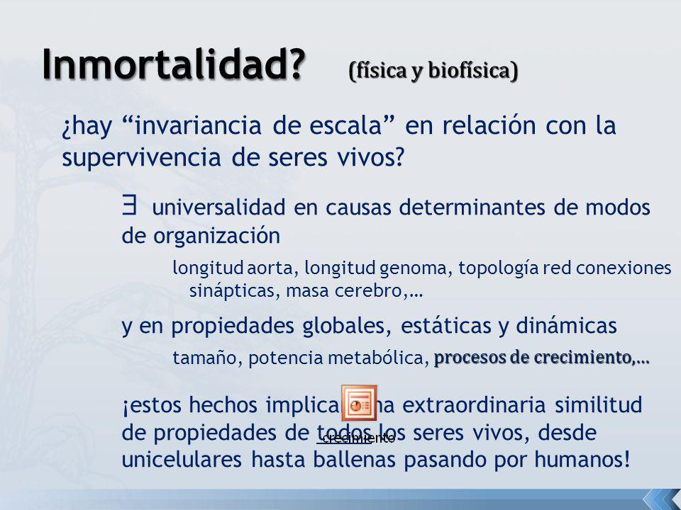 Inmortalidad (física y biofísica) ¿hay invariancia de escala en relación con la supervivencia de seres vivos