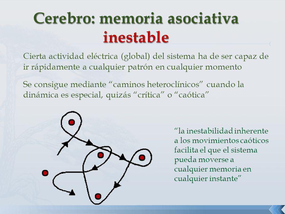 Cerebro: memoria asociativa inestable