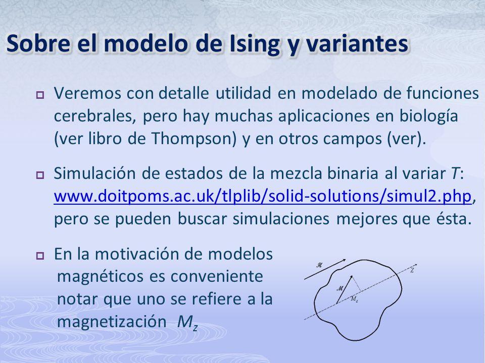 Sobre el modelo de Ising y variantes