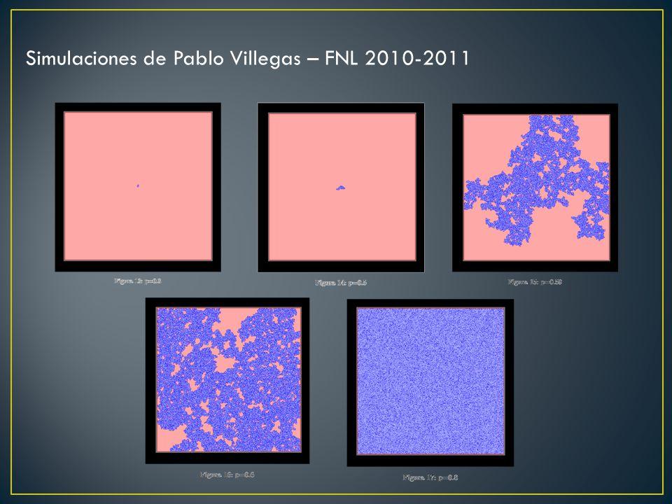 Simulaciones de Pablo Villegas – FNL 2010-2011