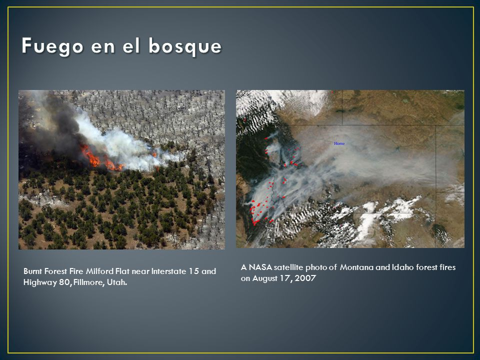 Fuego en el bosque A NASA satellite photo of Montana and Idaho forest fires on August 17, 2007.