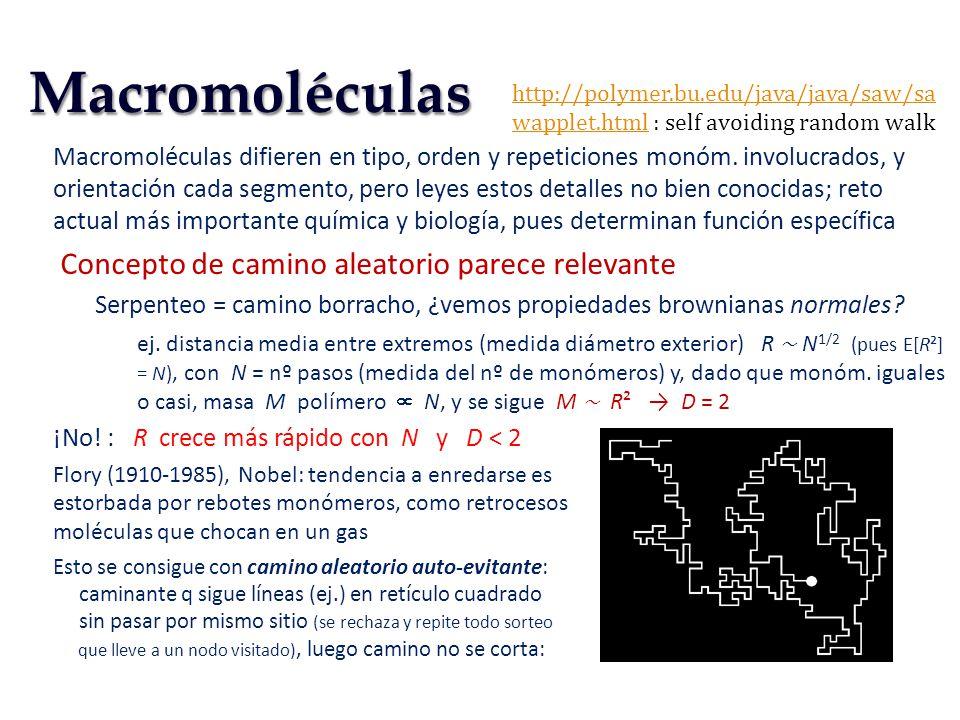 Macromoléculas Concepto de camino aleatorio parece relevante