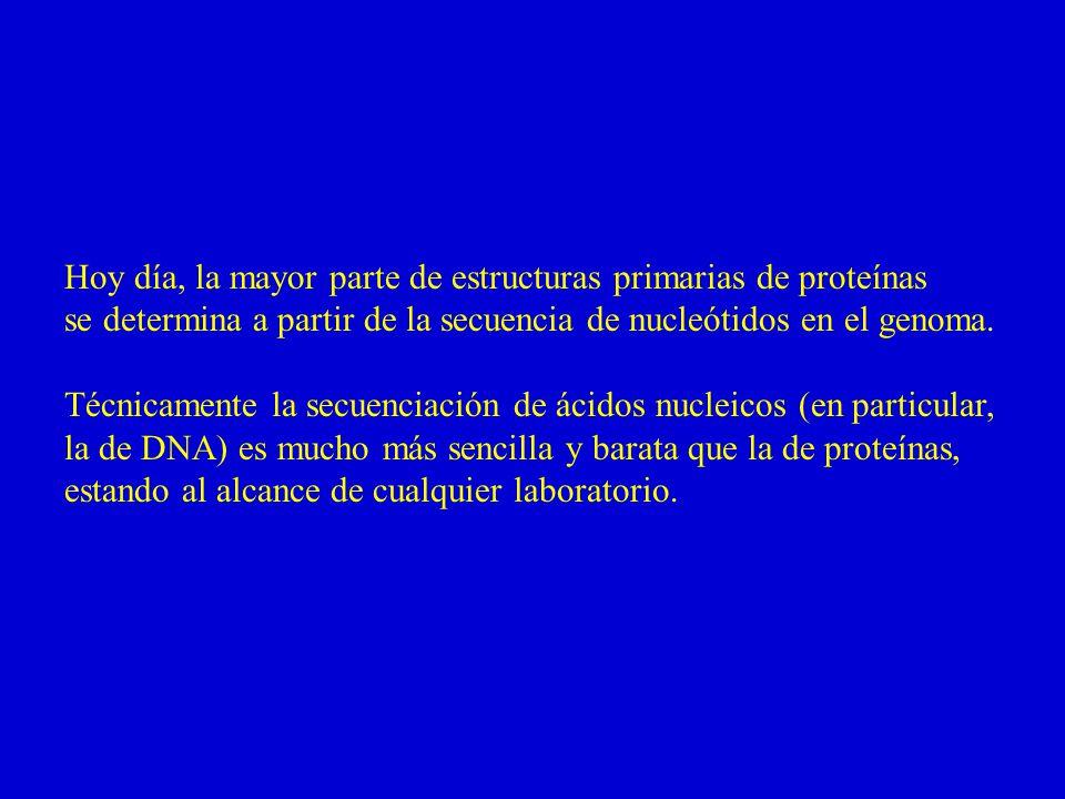 Hoy día, la mayor parte de estructuras primarias de proteínas