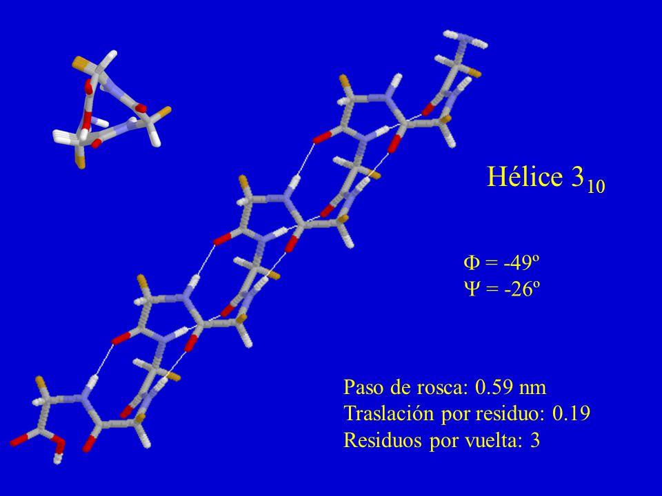 Hélice 310 F = -49º Y = -26º Paso de rosca: 0.59 nm