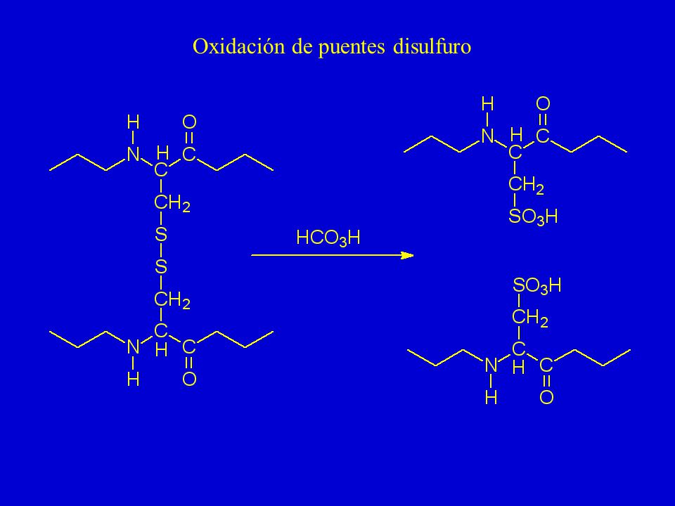Oxidación de puentes disulfuro