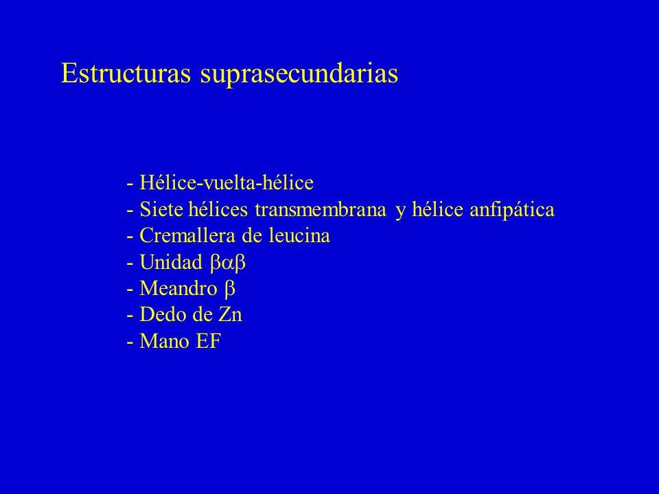 Estructuras suprasecundarias