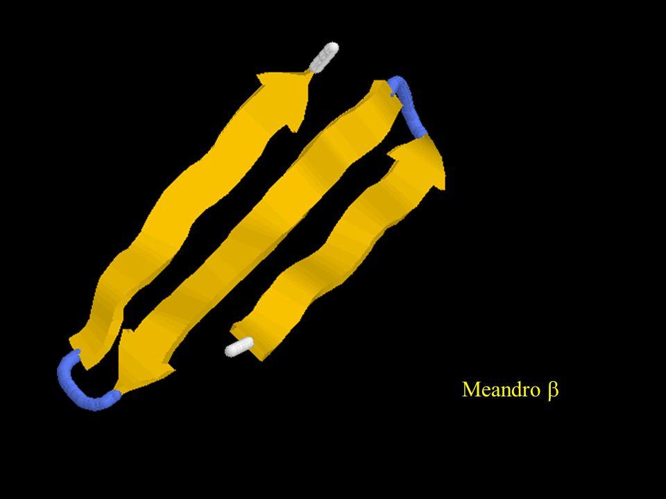 Meandro b