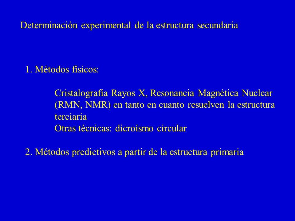 Determinación experimental de la estructura secundaria