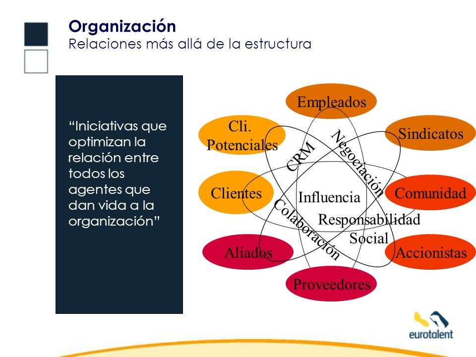 Organización Relaciones más allá de la estructura