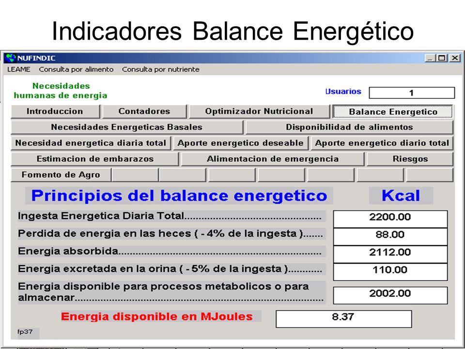 Indicadores Balance Energético