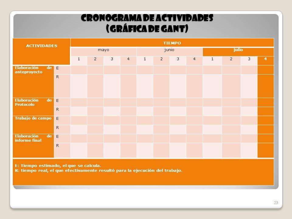 CRONOGRAMA DE ACTIVIDADES (GRÁFICA DE GANT)