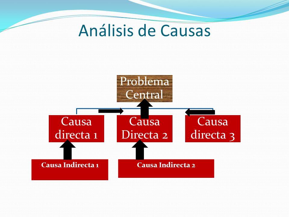 Análisis de Causas Causa Indirecta 1 Causa Indirecta 2