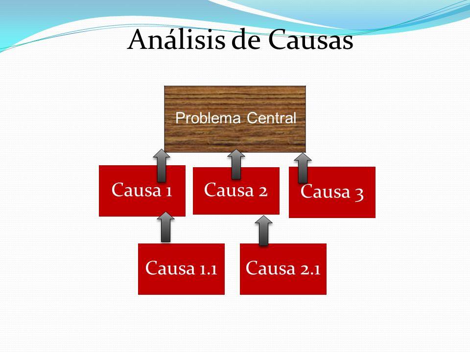 Análisis de Causas Problema Central Causa 1 Causa 2 Causa 3 Causa 1.1