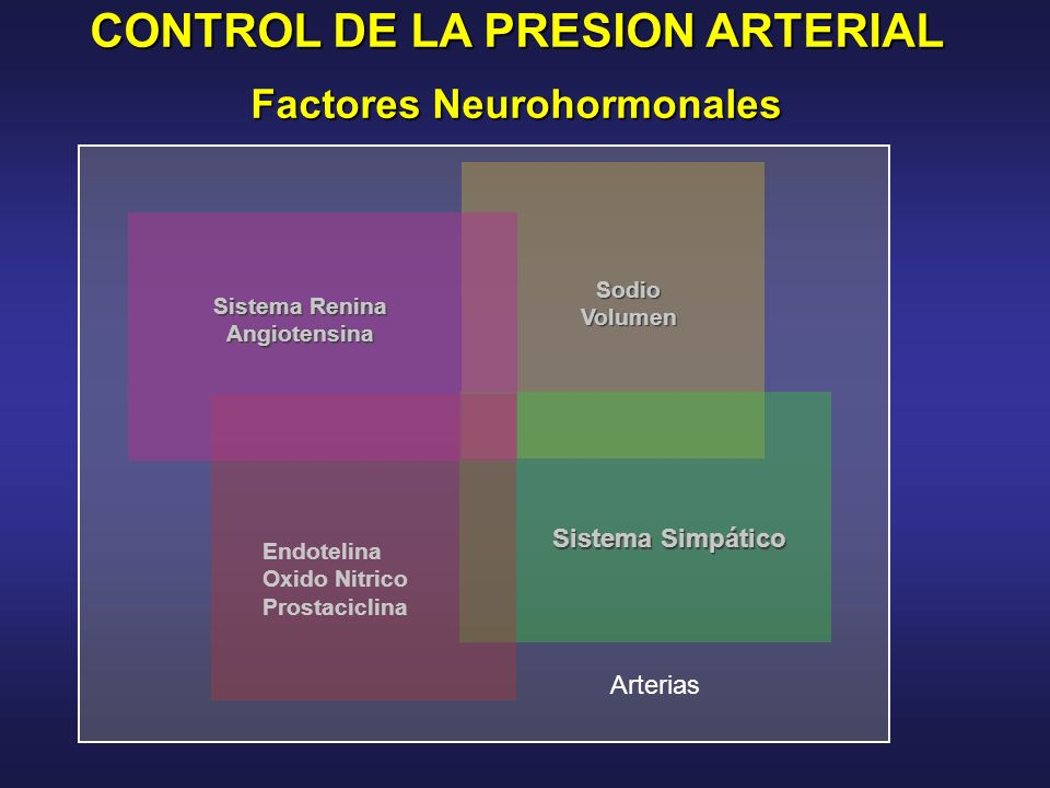 CONTROL DE LA PRESION ARTERIAL Factores Neurohormonales