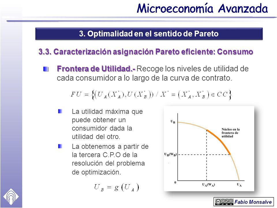 3.3. Caracterización asignación Pareto eficiente: Consumo