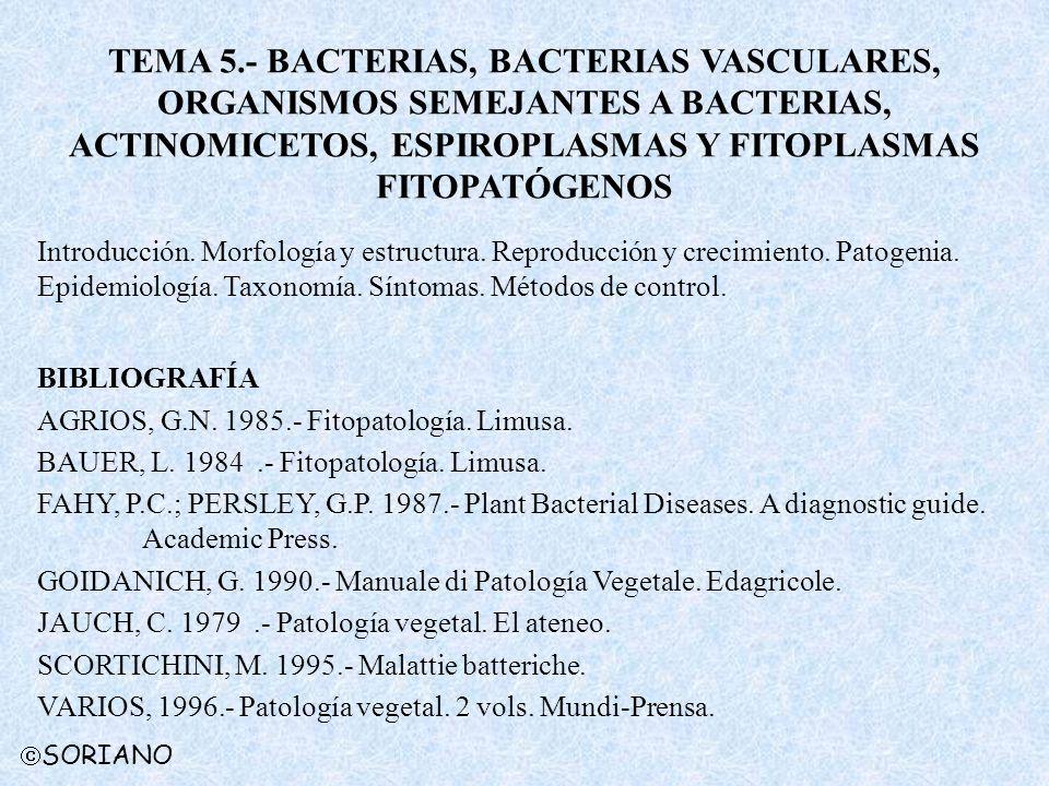 TEMA 5.- BACTERIAS, BACTERIAS VASCULARES, ORGANISMOS SEMEJANTES A BACTERIAS, ACTINOMICETOS, ESPIROPLASMAS Y FITOPLASMAS FITOPATÓGENOS