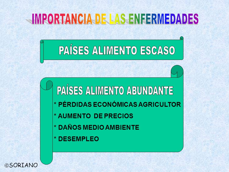 IMPORTANCIA DE LAS ENFERMEDADES