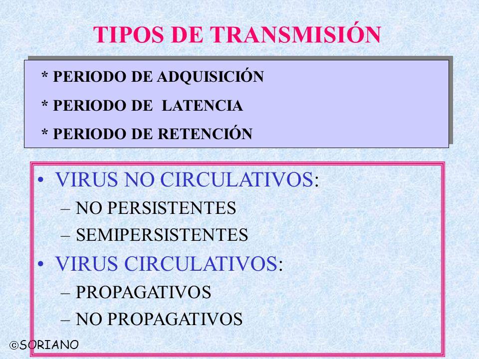TIPOS DE TRANSMISIÓN VIRUS NO CIRCULATIVOS: VIRUS CIRCULATIVOS: