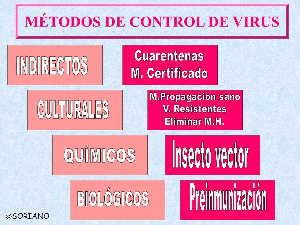 MÉTODOS DE CONTROL DE VIRUS