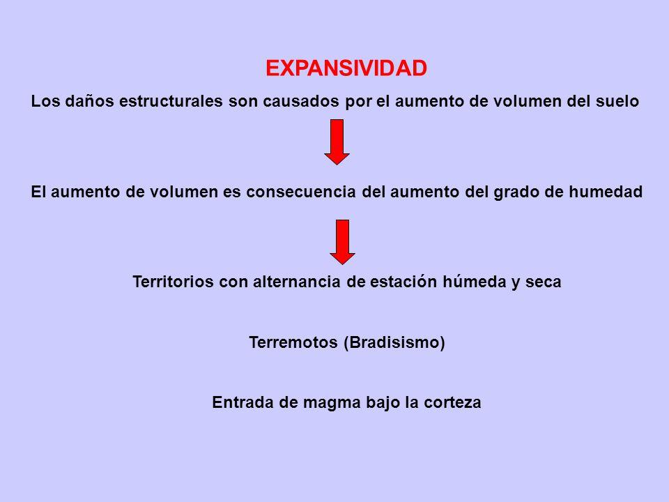 EXPANSIVIDAD Los daños estructurales son causados por el aumento de volumen del suelo.