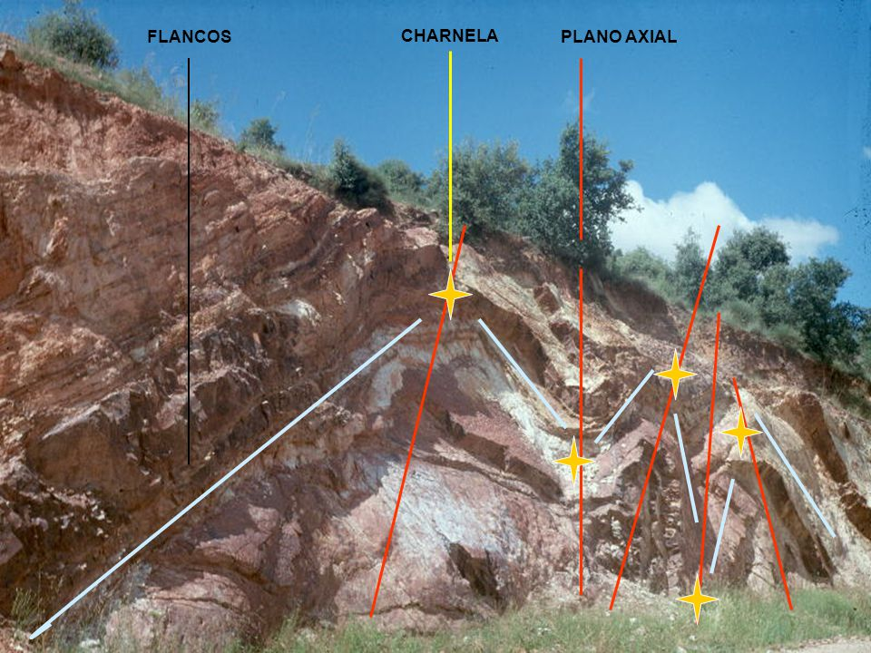 FLANCOS CHARNELA PLANO AXIAL