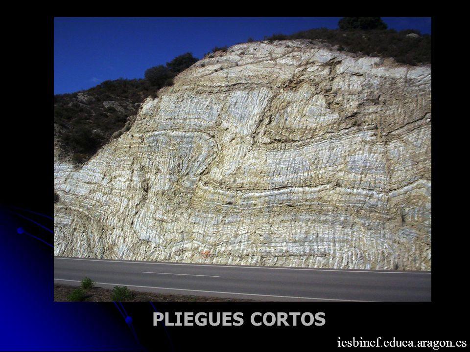 PLIEGUES CORTOS iesbinef.educa.aragon.es