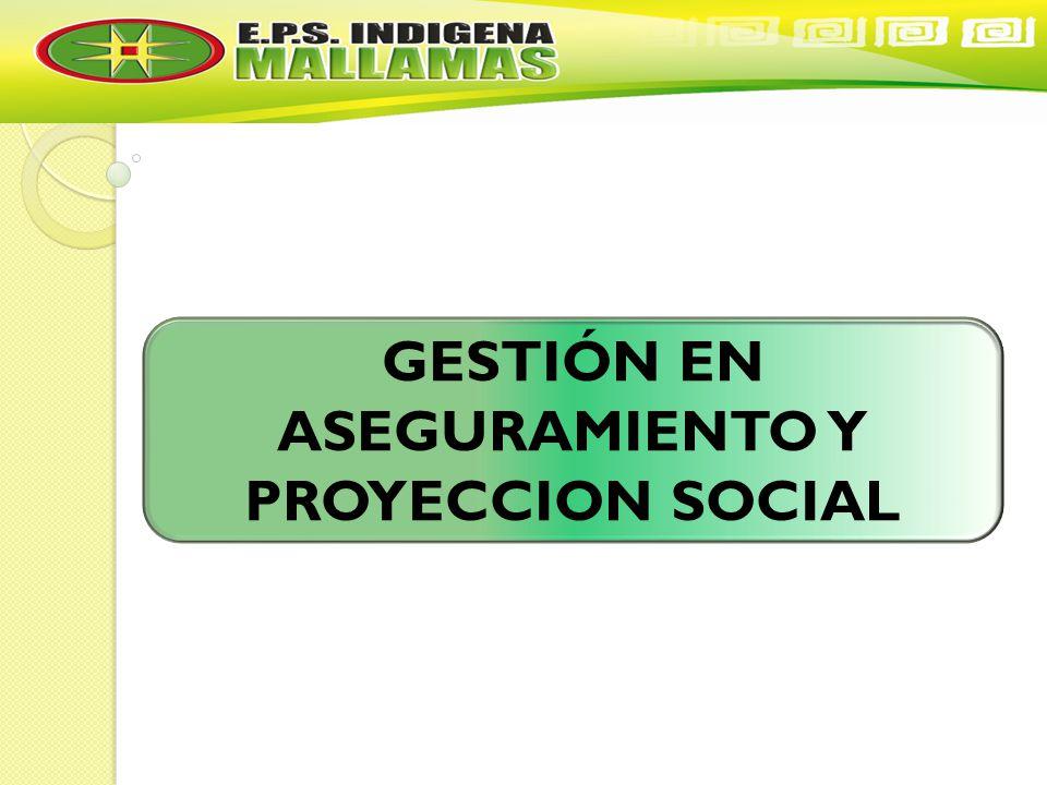 GESTIÓN EN ASEGURAMIENTO Y PROYECCION SOCIAL