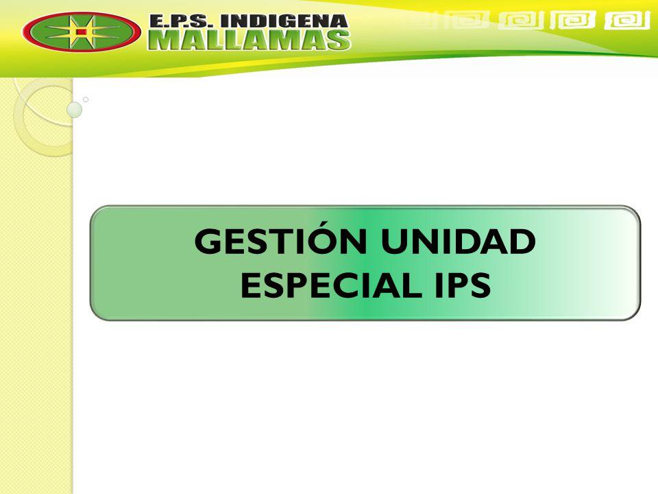GESTIÓN UNIDAD ESPECIAL IPS