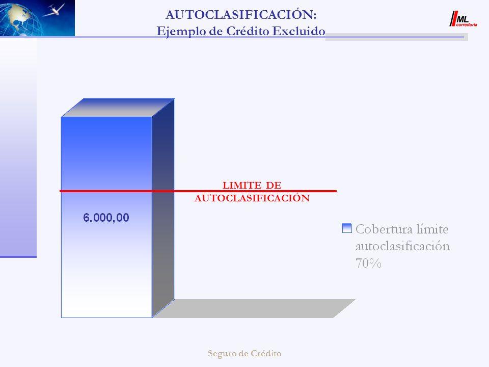 AUTOCLASIFICACIÓN: Ejemplo de Crédito Excluido