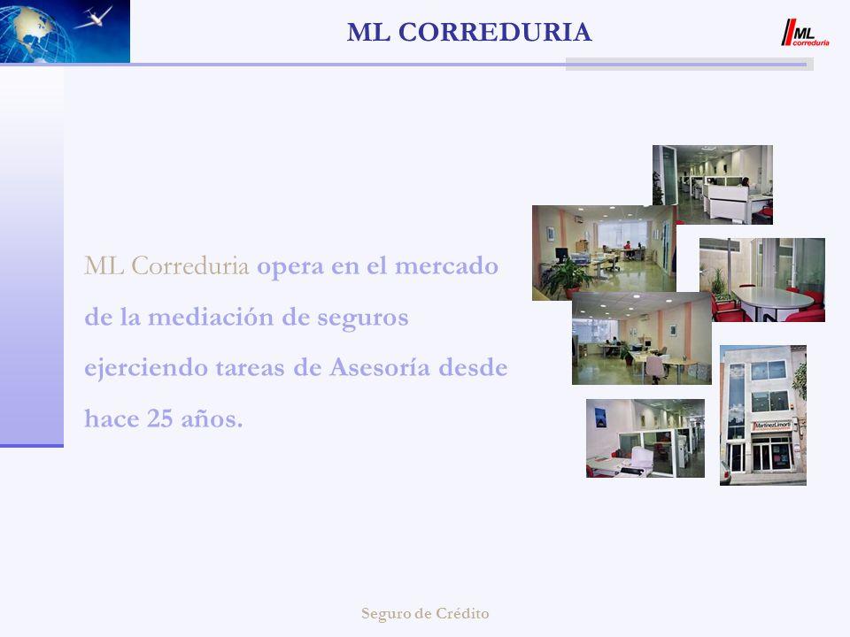ML CORREDURIA ML Correduria opera en el mercado de la mediación de seguros ejerciendo tareas de Asesoría desde hace 25 años.