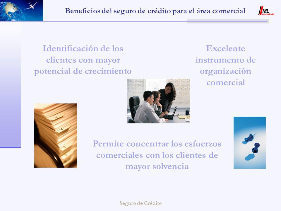 Beneficios del seguro de crédito para el área comercial