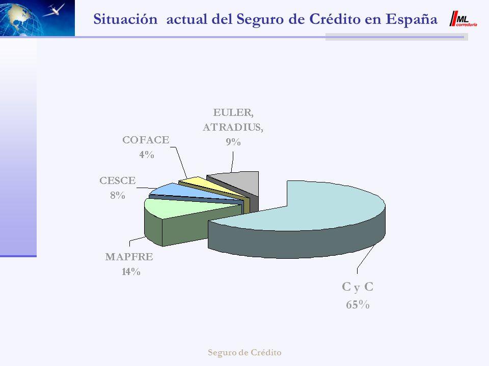 Situación actual del Seguro de Crédito en España