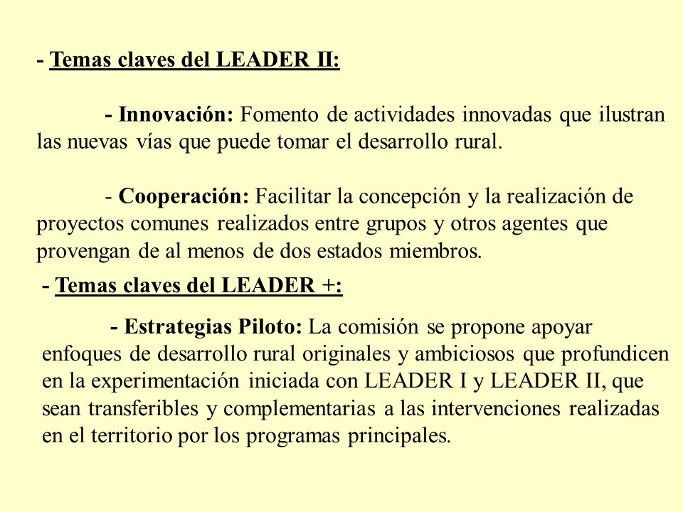 - Temas claves del LEADER II: