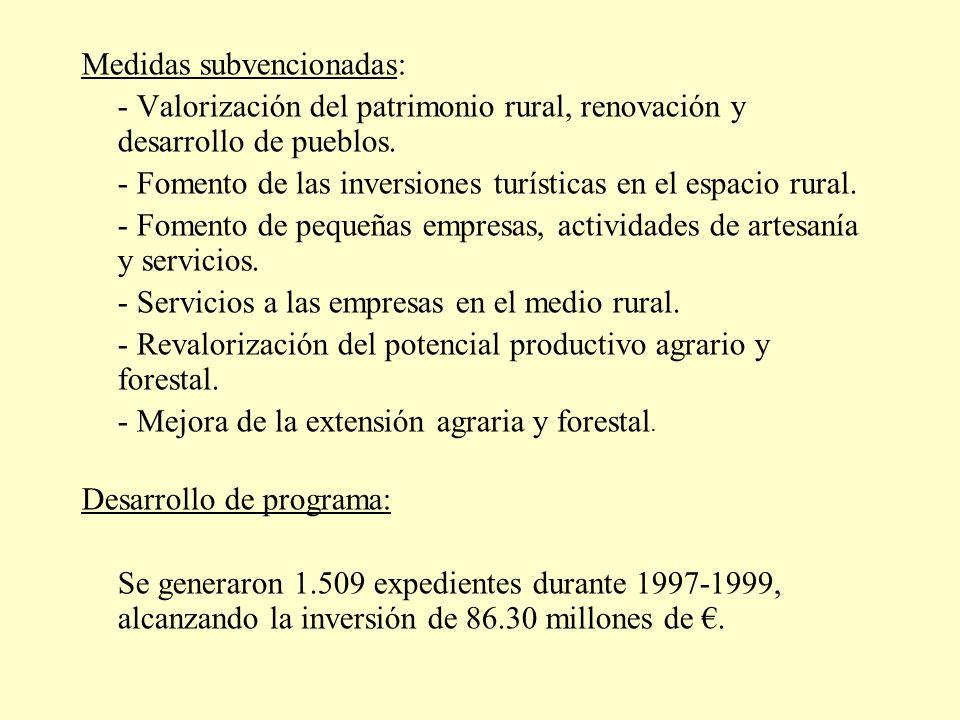 Medidas subvencionadas:
